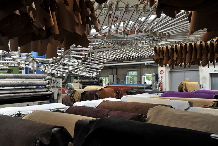 Haas Tanneries⑥